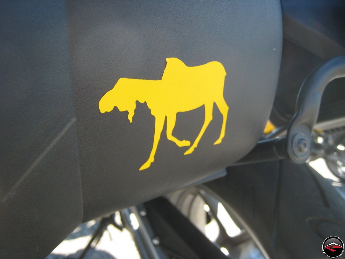Torn moose sticker
