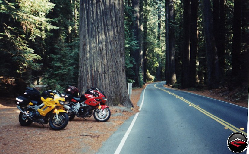 Honda VTR1000 and Suzuki TL100SMotorcycles along the Avenue of the Giants
