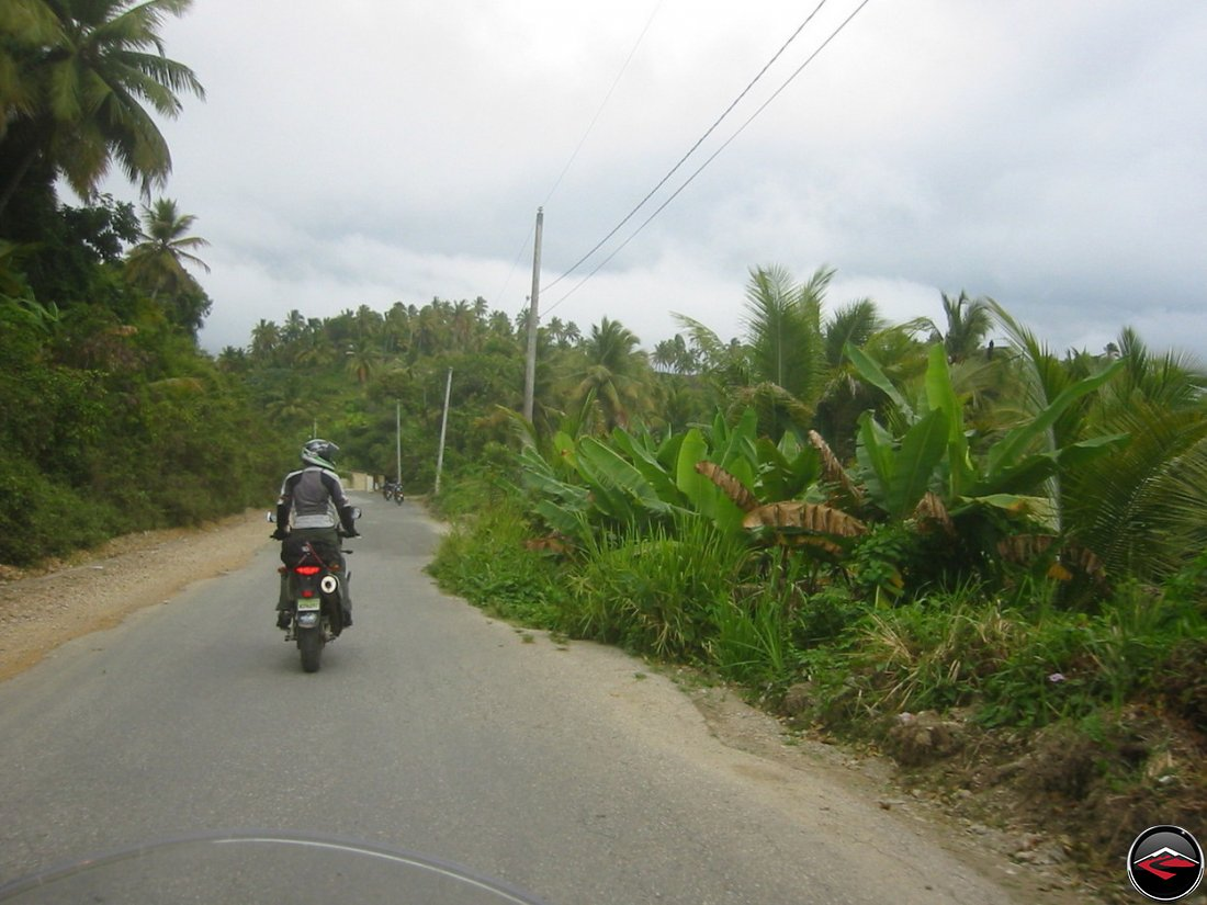 man riding a motorcycle, standing on the footpegs to see over the top of the vegetation