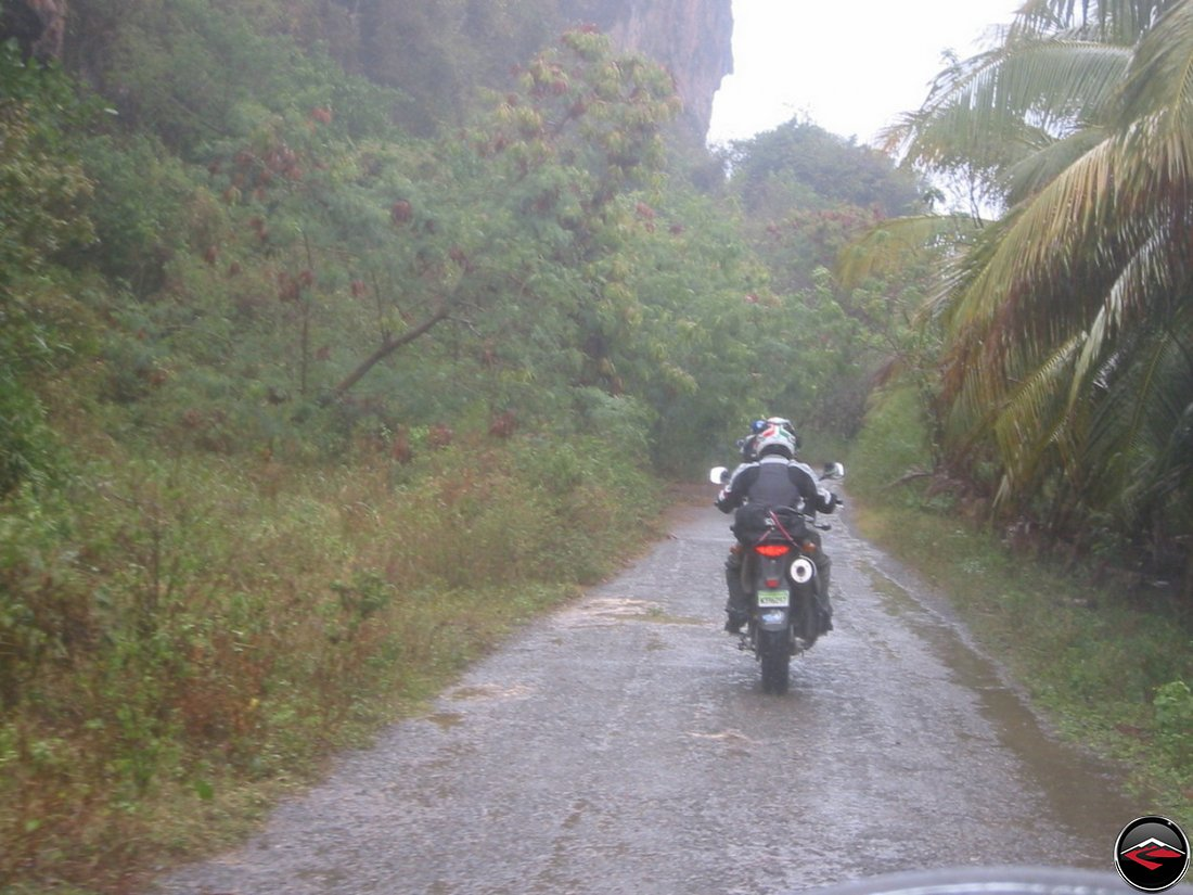 riding a motorcycle in the rain down a narrow road with tall, wet vegetation