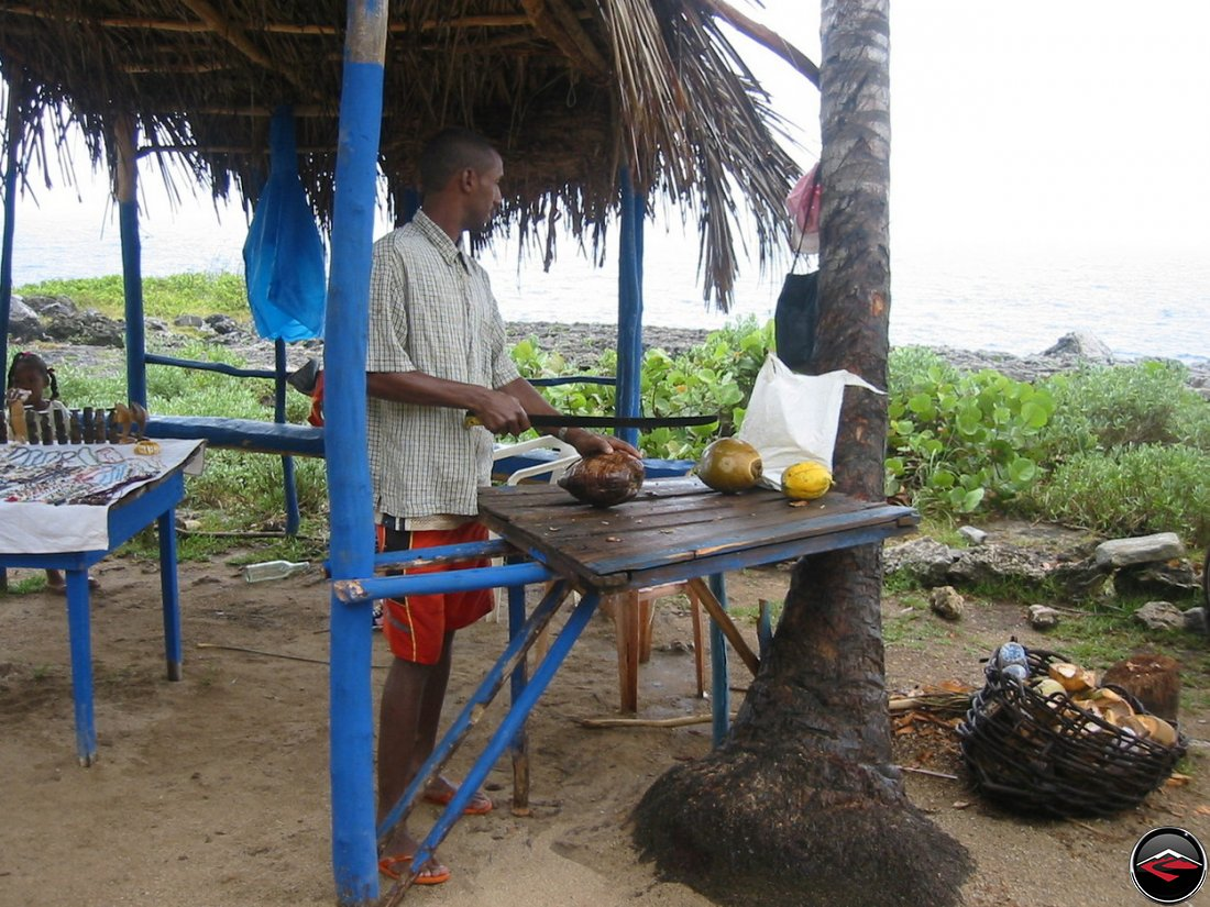 coconuts for sale on the beach