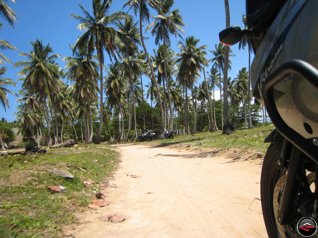 palm trees on the beach in the caribbean with a motorcycle riding to a parking spot