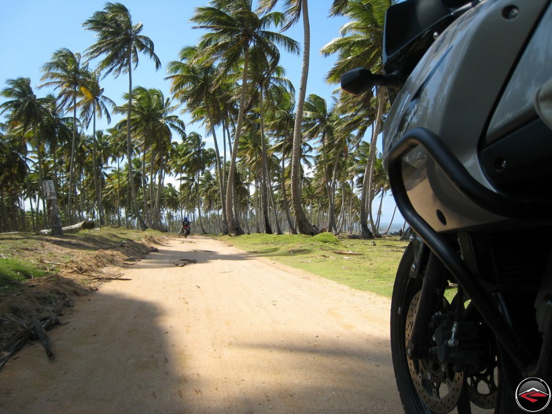 motorcycles riding down a sandy road along the beach, beneath blowing palm trees