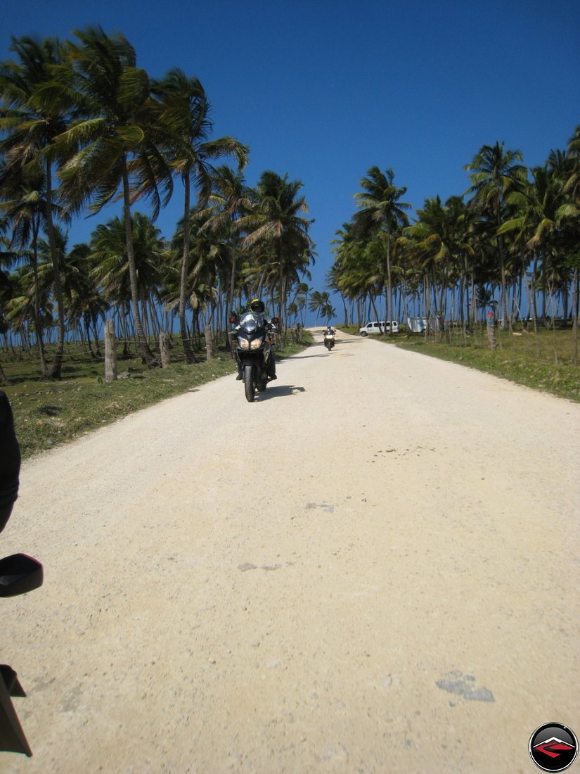 motorcycles riding down a sandy road along the beach, beneath blowing palm trees, bright blue, clear skies
