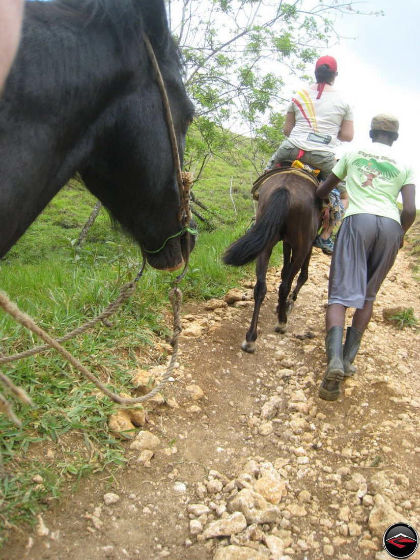 riding horses to Cascada El Limon Dominican Republic