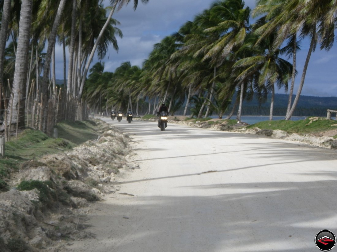 Riding motorcycles along the beach, beneath palm trees blowing in the wind