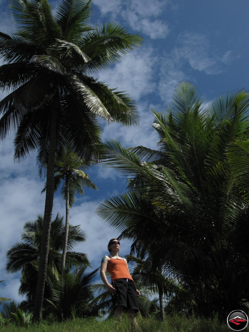 Woman in an orange shirt standing on the horizon of a caribbean island with palm trees in the background
