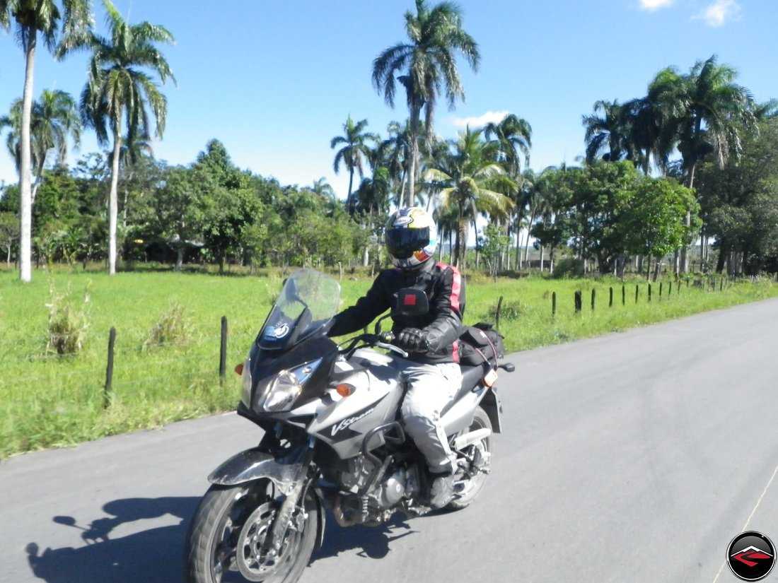 man riding a suzuki v-strom 650 past palm trees