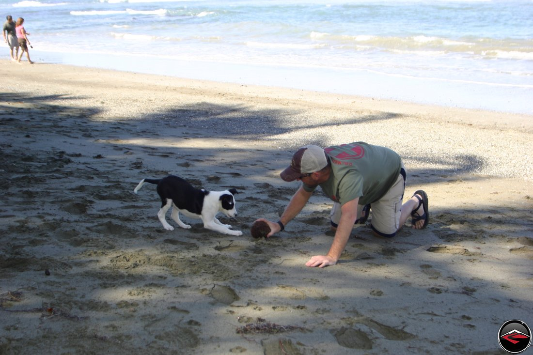 Man playing with a black and white puppy using a coconut as a ball