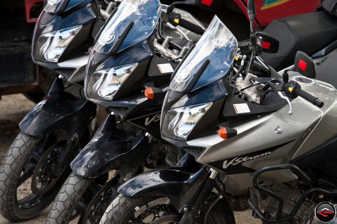 Suzuki V-Strom 650 motorcycles parked in a line