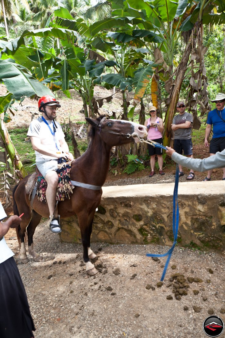 Man riding a small, skittish horse Cascada El Limon Dominican Republic