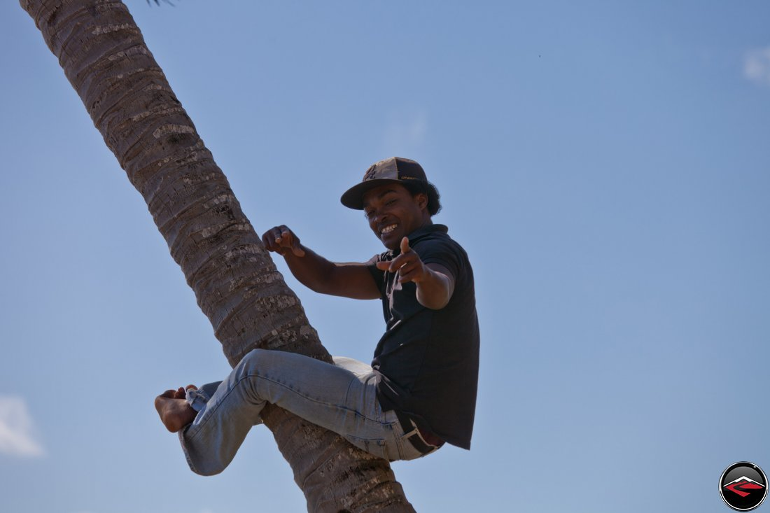 Man holding onto the truck of a palm tree with just his legs