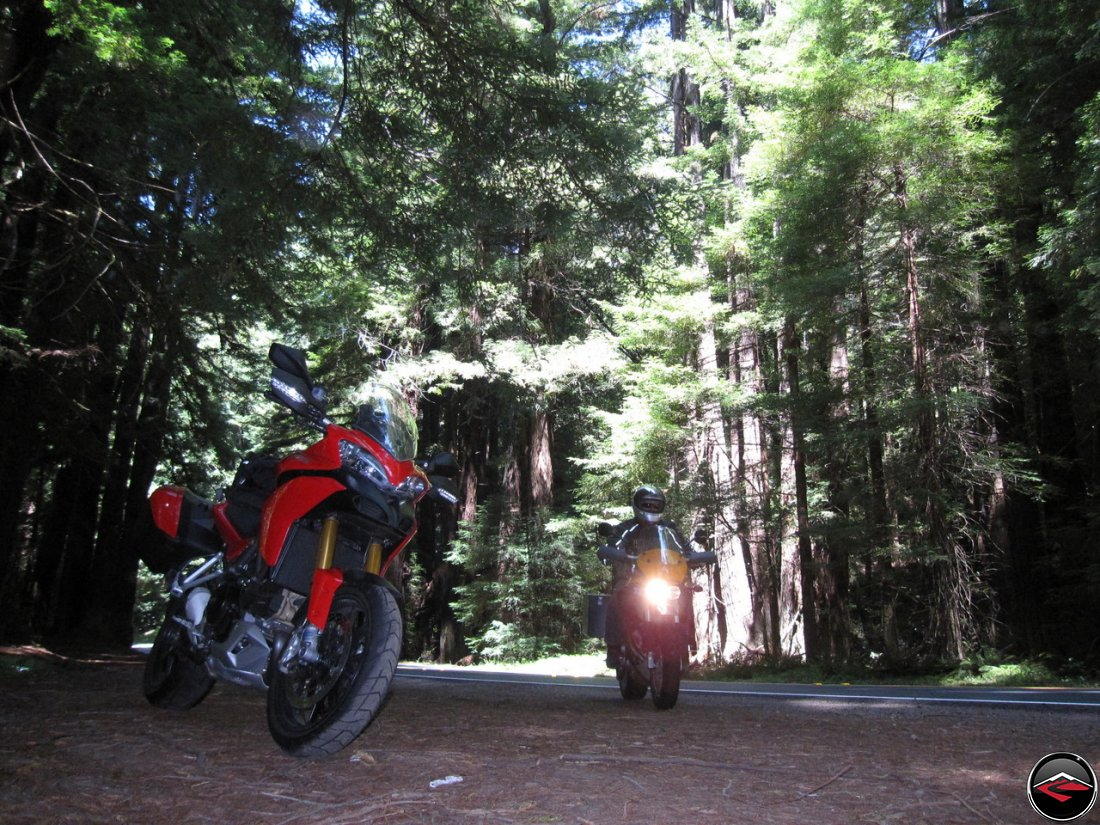 Ducati Multistrada 1200 and a Buell Ulysses at California, Navarro River Redwoods State Park, Highway Pullout