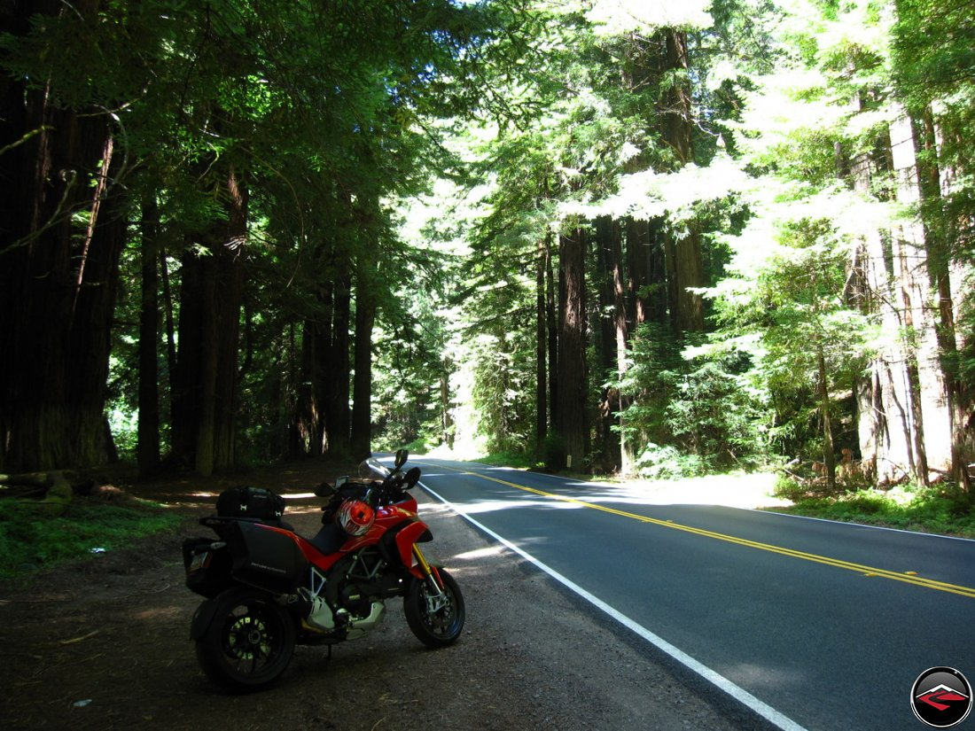 Ducati Multistrada 1200 parked in California's Navarro River Redwoods State Park