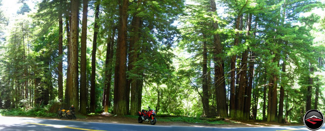 Scenic Panorama of a Ducati Multistrada 1200 and a Buell Ulysses inside California's Navarro River Redwoods State Park