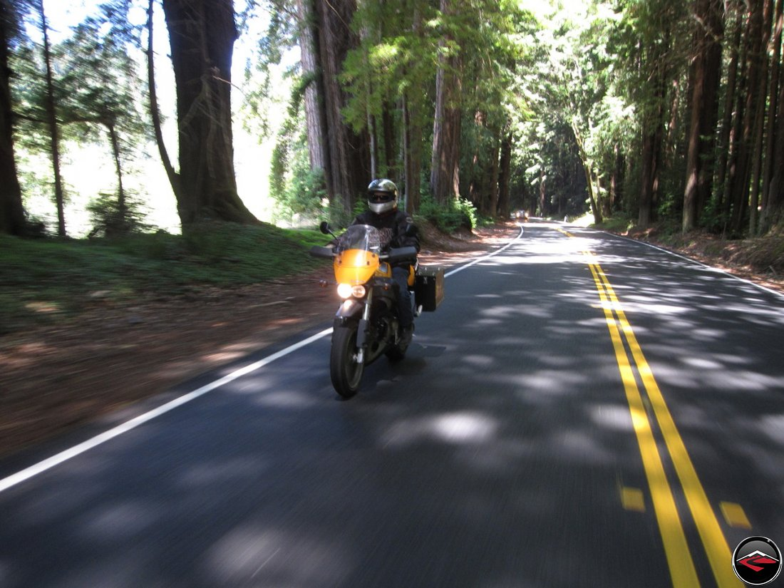 Riding a Buell Ulysses through Dense Redwood Tree's inside Navarro River Redwoods State Park in California
