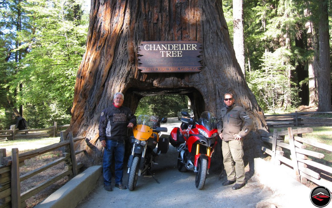 Tom and Dave with their two motorcycles, a Ducati Multistrada 1200 and a Buell Ulysses at the Chandelier Tree in Leggit California