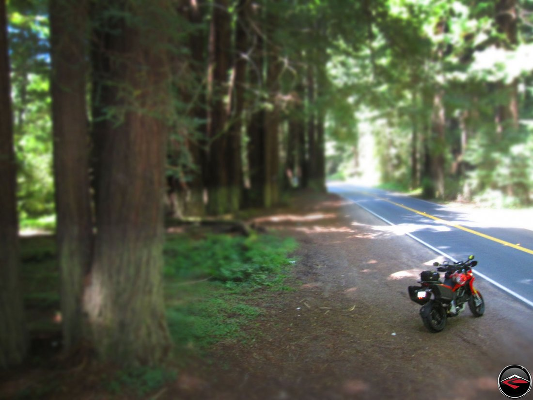 Forced Perspective of a Ducati Multistrada 1200 at California's Navarro River Redwoods State Park along California Highway 128
