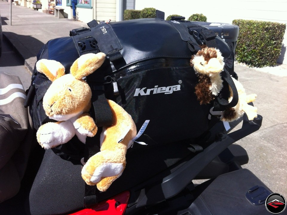 Kriega US-20 Tailbag attached to a Ducati Multistrada 1200. Flexible straps allow for a stuffed rabbit and a stuffed duck to ride along.